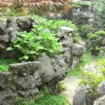 Le très beau jardin du Yuyuan Garden