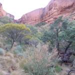 Le King canyon nous tend les bras sous la pluie