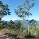 Dernier paysage montagneux avant de rejoindre Cairns