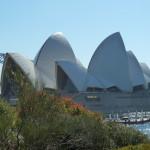 Panorama sur l'opéra de Sydney
