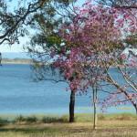 Panorama sur le lac de Pionner Valley