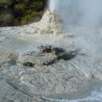 Le geyser Lady Knox se met en route une fois par jour