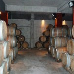 Les vins argentins sont réputés dans le monde entier