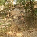 Des jolis maisons en bois perdue dans les champs