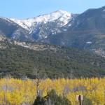 Un magnifique paysage entre les montagnes enneigées, les dunes de sable et les arbres d'automne