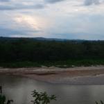 Panorama sur la jungle