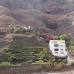 Les terrasses cultivés le long du chemin