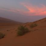 Coucher de soleil sur le désert des wahibas