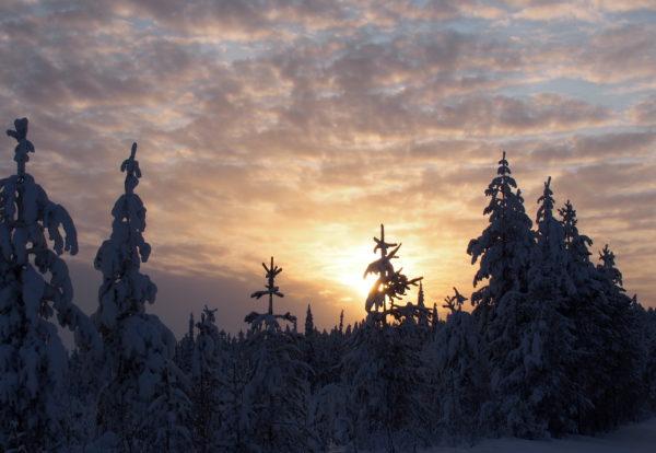 Dans la neige finlandaise