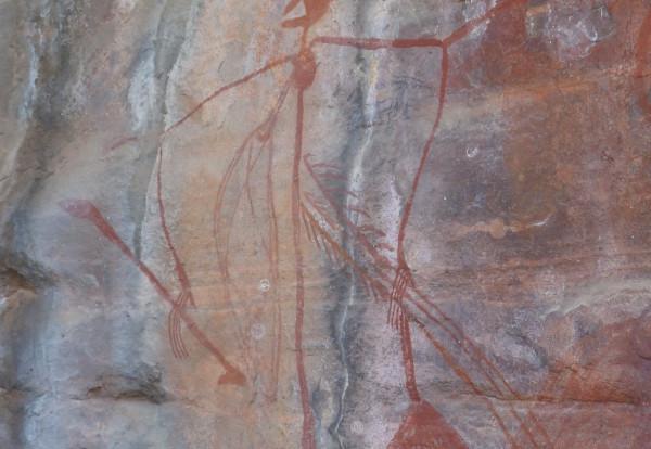 Premier contact avec la nature australienne