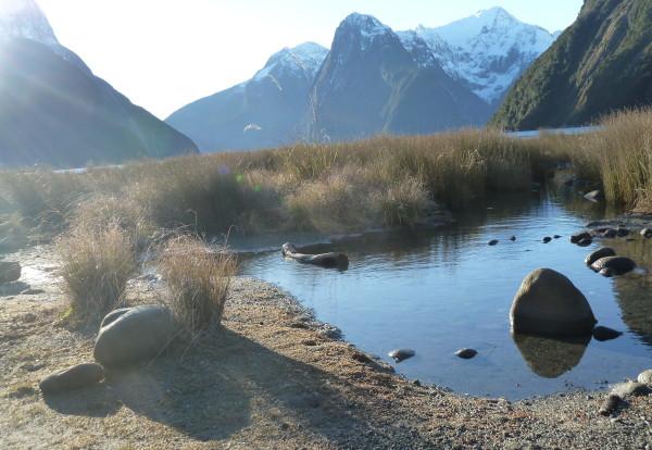 Petit tour rapide de Nouvelle Zélande