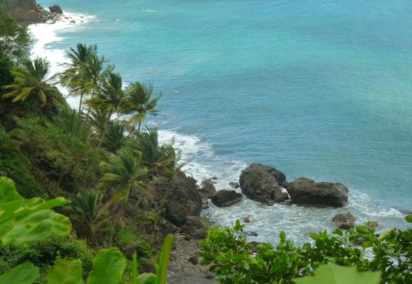 A la découverte de la Martinique authentique