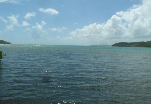 Petites anecdotes de Martinique