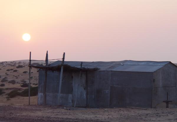 Stoppées au milieu du désert