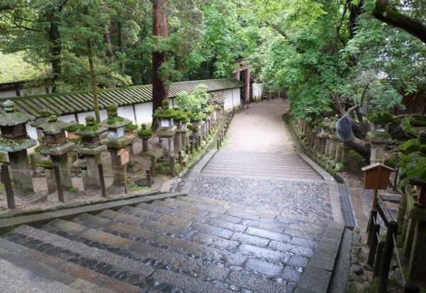Nara, la cité presque perdue